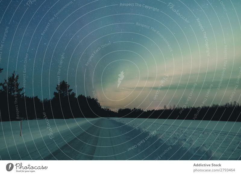 Verschneite Straße am Waldrand mit sternenklarem Himmel Stern Winter Landschaft Arktis Schnee Wolken Wetter Menschenleer Baum Konifere Asphalt Wege & Pfade