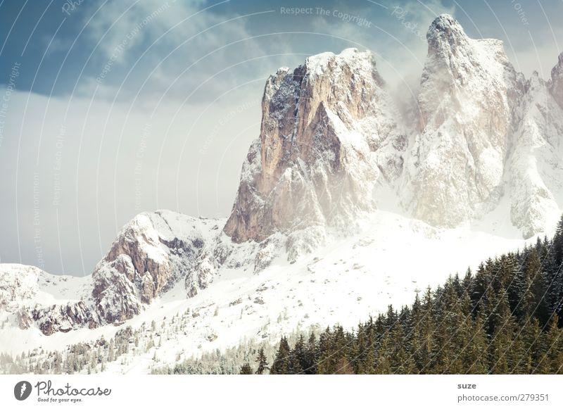 Großes im Blick Ferien & Urlaub & Reisen Schnee Berge u. Gebirge Umwelt Natur Landschaft Urelemente Himmel Wolken Frühling Winter Klima Schönes Wetter Wald