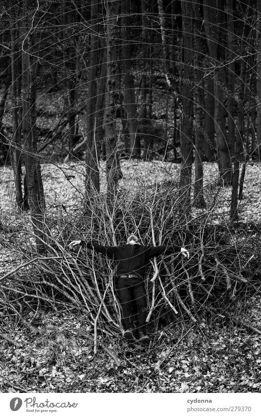 Lost Mensch Natur Jugendliche Einsamkeit ruhig Winter Erwachsene Wald Erholung Umwelt dunkel Junger Mann träumen Gesundheit Zeit 18-30 Jahre