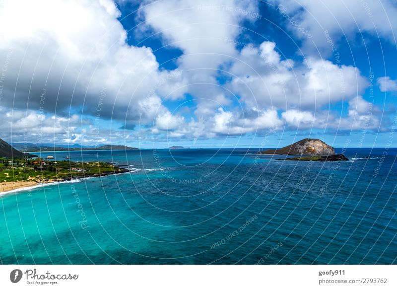 Oahu / Hawaii Ferien & Urlaub & Reisen Tourismus Ausflug Abenteuer Ferne Freiheit Sommer Strand Meer Insel Wellen Natur Landschaft Wasser Himmel Wolken
