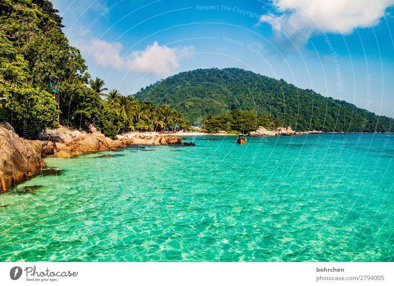träumchen Felsen Erholung entspannen erholen Romantik Palme Malaysia Landschaft Asien Insel Urwald Paradies Trauminsel perhentian besar Palmen Wasser