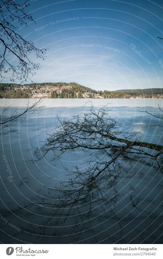 Winterlandschaft am gefrorenen Titisee im Schwarzwald schön Ferien & Urlaub & Reisen Tourismus Sommer Sonne Schnee Kultur Natur Landschaft Himmel Herbst Baum
