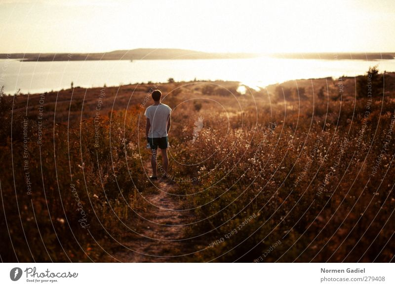 Sommersonne Mensch Mann Jugendliche Ferien & Urlaub & Reisen Sonne Strand ruhig Erwachsene Erholung Ferne Freiheit See träumen 18-30 Jahre maskulin