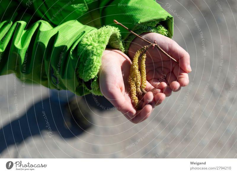 Haselnuss II Leben Kindererziehung Kindergarten Kleinkind Mädchen 3-8 Jahre Kindheit genießen grün Hilfsbereitschaft trösten dankbar Frühling Außenaufnahme Hand