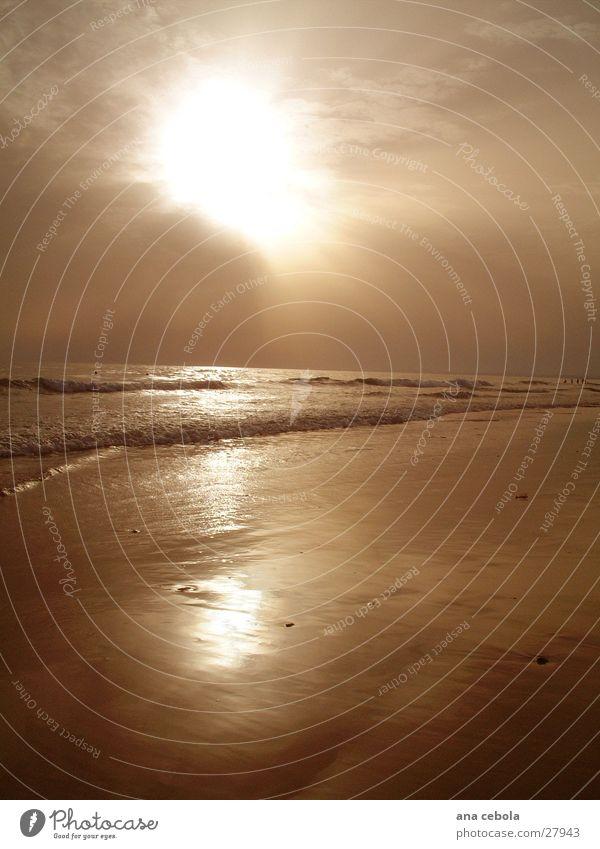 See2 Natur Wasser Strand Sand
