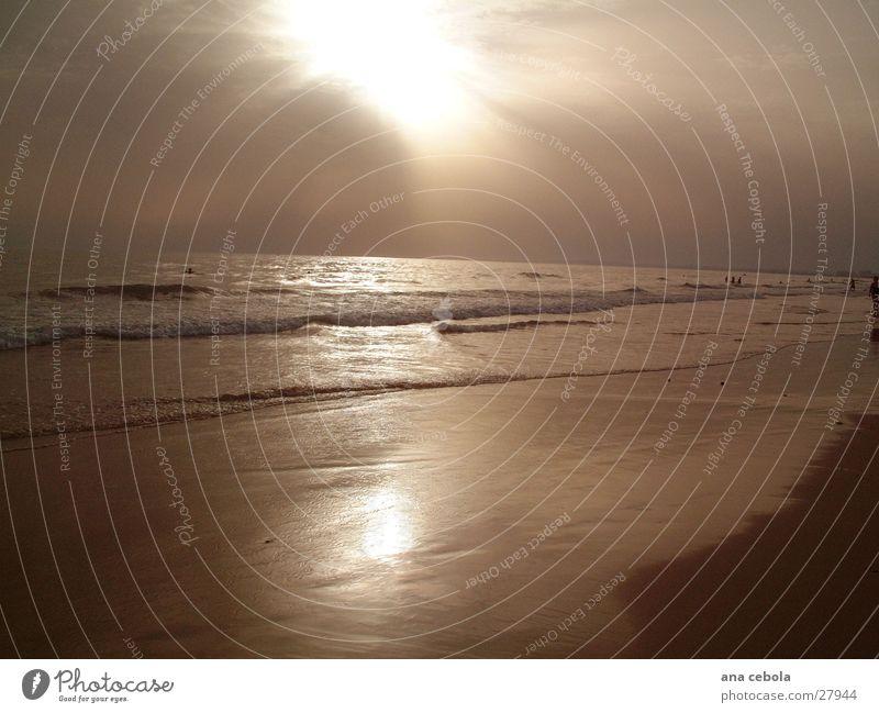 See3 Strand Sonnenuntergang Natur Wasser Sand
