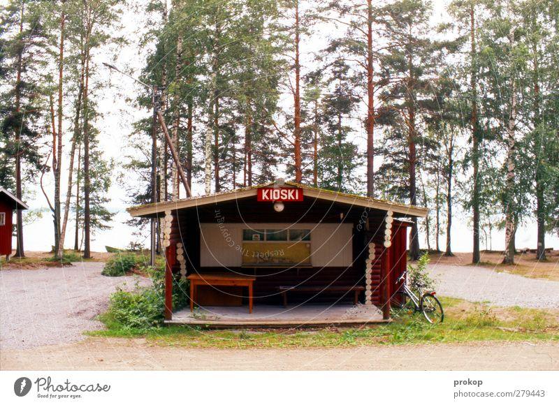 Nordischer Späti Natur Landschaft Baum Wald Küste Seeufer Hütte Fassade natürlich Business kaufen Krise Ferien & Urlaub & Reisen Tourismus Wandel & Veränderung