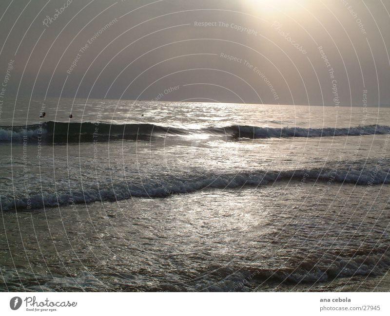See 1 Strand Sonnenuntergang Natur Wasser Sand