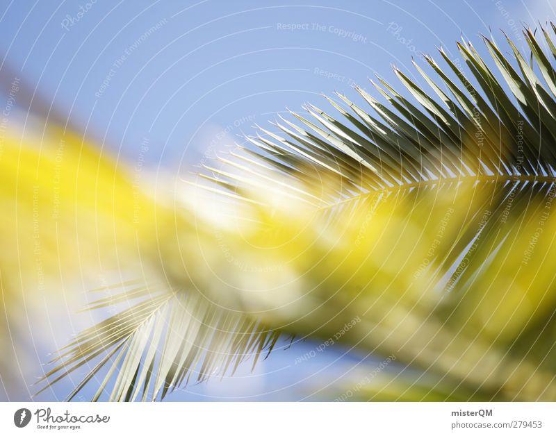 Palmengewedel. Ferien & Urlaub & Reisen grün Sommer Sonne Kunst ästhetisch Sommerurlaub Urlaubsfoto Palmenwedel Urlaubsort Urlaubsstimmung Palmenstrand