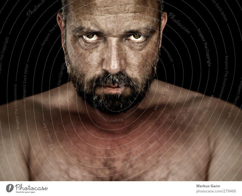 Mann Mensch maskulin Erwachsene 1 30-45 Jahre Blick Coolness muskulös stark braun schwarz Senior Ärger skurril expressiv Bart Auge Blick in die Kamera Farbfoto