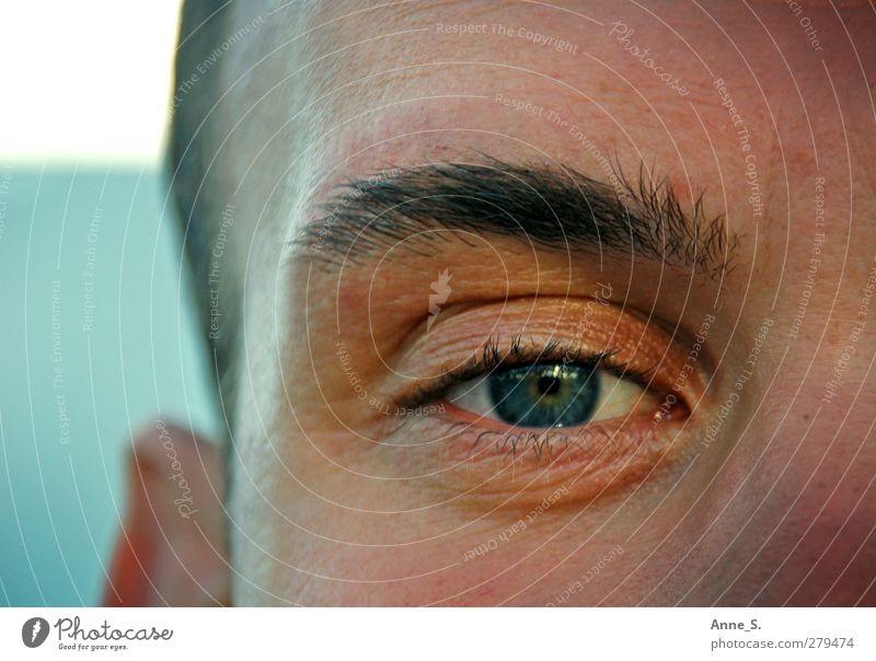 Nähe. maskulin Mann Erwachsene Auge 1 Mensch 18-30 Jahre Jugendliche beobachten Blick nah natürlich Wärme Stimmung Kraft Vertrauen Sicherheit Menschlichkeit