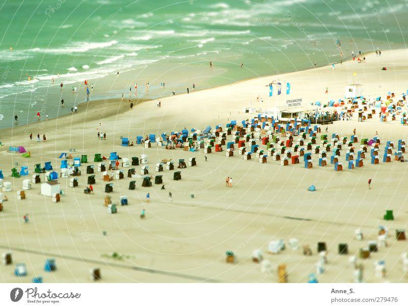 Zwergenstrand Mensch Ferien & Urlaub & Reisen Sommer Meer Strand Erholung Wärme Leben Küste Sand Schwimmen & Baden Tourismus Schönes Wetter Kommunizieren