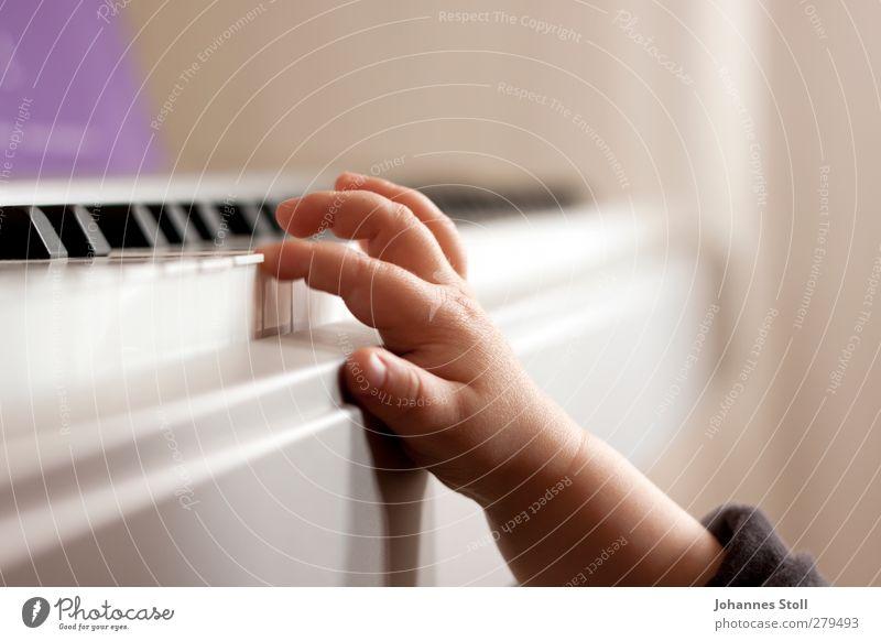 Fingerübung Wohnung Kindererziehung Kleinkind Kindheit Hand 1 Mensch 1-3 Jahre Musik Klavier Keyboard berühren Spielen Neugier grau violett Bildung Kunst lernen