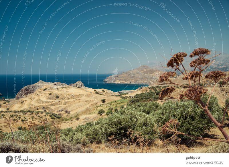 Sehnsucht nach Meer Natur Landschaft Pflanze Urelemente Erde Wasser Wolkenloser Himmel Horizont Sommer Schönes Wetter Sträucher Hügel Küste Bucht Kreta trist