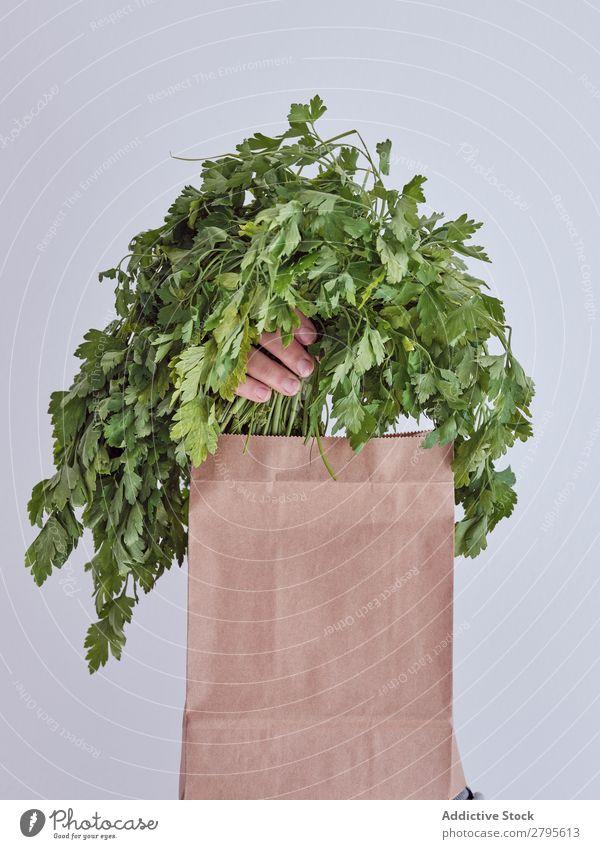 Personenhand aus der Packung ausgestreckt und Petersilie haltend Mensch Hand Paket sich[Akk] gemeldet Gemüse Lebensmittel Tasche Handwerk Papier Entwurf frisch