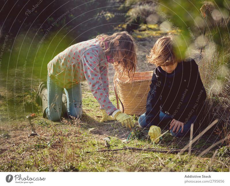 Junge und Mädchen sammeln Müll vom Boden auf. Müllbehälter Jugendliche Park Container Umwelt