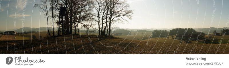Hochstand (Panorama) Umwelt Natur Landschaft Pflanze Erde Luft Himmel Wolken Sommer Wetter Schönes Wetter Wärme Baum Sträucher Feld Wald Hügel Haus blau braun
