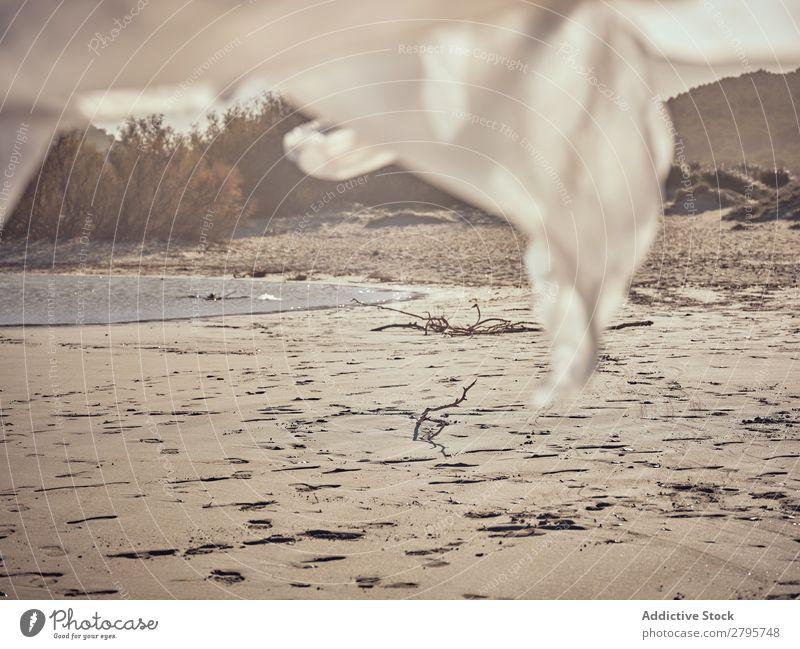 Textil- und Sandküste am Wasser Küste Fluss Wind Sträucher Sonnenstrahlen