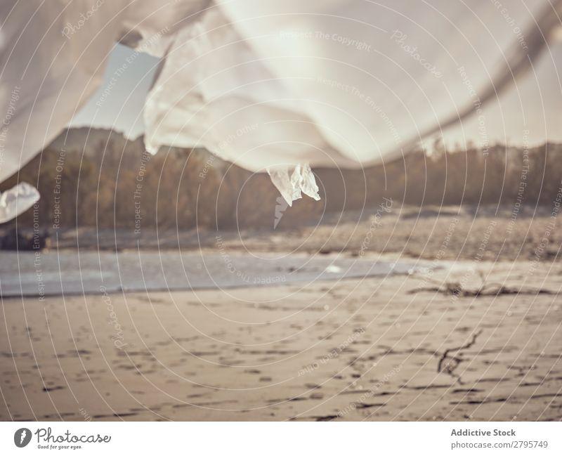 Textil- und Sandküste am Wasser Küste winkend Fluss Wind Sträucher Sonnenstrahlen Tag Entwurf Landschaft Sommer Strand weiß Pflanze natürlich wild Wald Natur