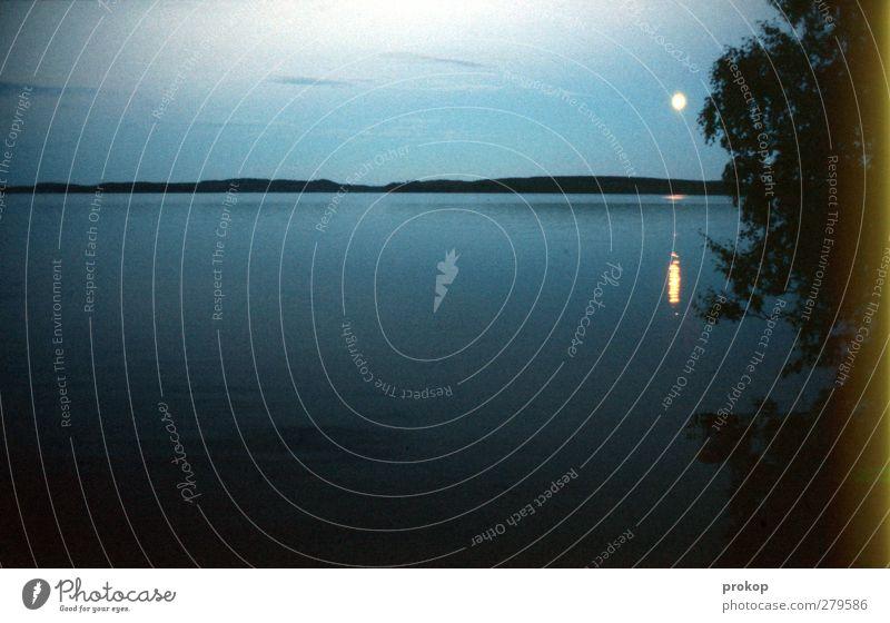 Nordischer Mondschein Umwelt Natur Landschaft Wasser Himmel Nachthimmel Horizont Vollmond Schönes Wetter Pflanze Baum Küste Seeufer Ferne Unendlichkeit blau