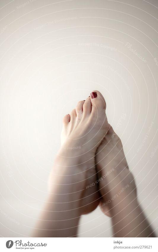 Füße Lifestyle Freude schön Körperpflege Pediküre Nagellack Wellness Wohlgefühl Sinnesorgane ruhig Freizeit & Hobby Spielen Leben Frauenfuß 1 Mensch berühren
