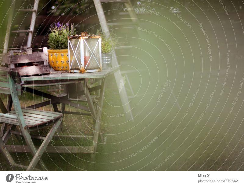 Garten alt Lampe Tisch Dekoration & Verzierung Häusliches Leben Idylle Stuhl einfach gemütlich Blumentopf Tischdekoration Gartentisch