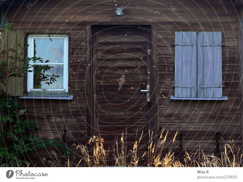 Hütte Wohnung Dorf alt Holzhütte gemütlich Allgäu Horn Fensterladen Farbfoto Außenaufnahme Menschenleer