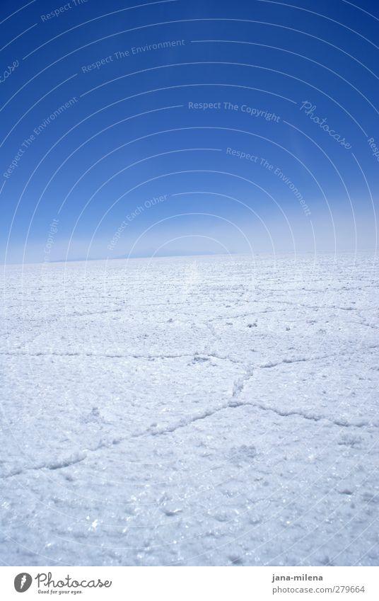 die stille hören Sinnesorgane Erholung ruhig Meditation Umwelt Natur Landschaft Urelemente Luft Himmel Wolkenloser Himmel Horizont Winter Wetter Schönes Wetter