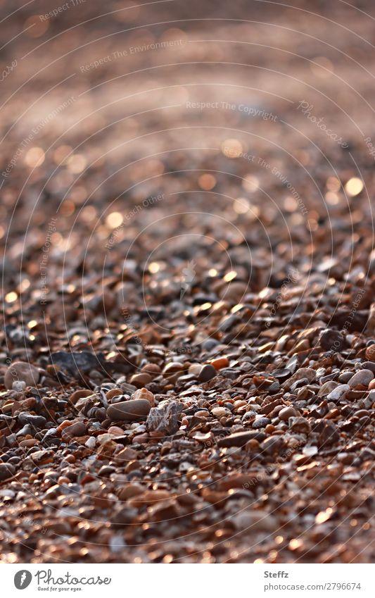 Steinstrand Natur Sommer schön Landschaft Strand Umwelt natürlich braun viele Sommerurlaub Lichtspiel sommerlich beige Lichtpunkt steinig