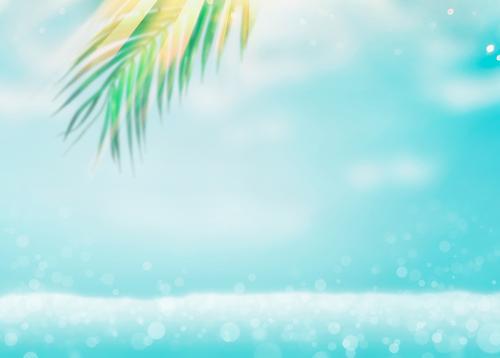 Sommer Meer Hintergrund mit Palmblätter Lifestyle Design Freude Ferien & Urlaub & Reisen Sommerurlaub Strand Wellen Natur Blatt Hintergrundbild Palmenwedel