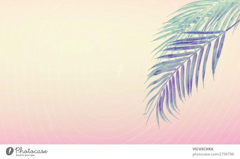 Sommer Hintergrund mit tropische Palmblätter Ferien & Urlaub & Reisen Natur Pflanze Strand Hintergrundbild gelb Stil rosa Design Sommerurlaub Palmenwedel