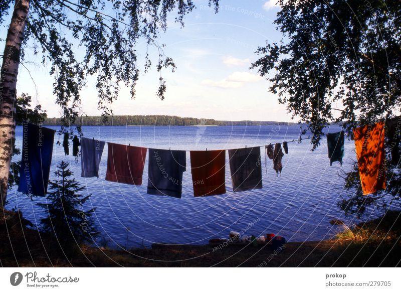 Große Wäsche Himmel Natur Wasser Ferien & Urlaub & Reisen Sommer Pflanze Baum Strand Wolken Erholung Landschaft Umwelt Leben Küste Freiheit See