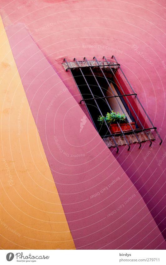 Bunter Wohnen Stadt Sommer Farbe gelb Fenster Gebäude Linie Kunst rosa außergewöhnlich Fassade frisch verrückt leuchten ästhetisch Perspektive