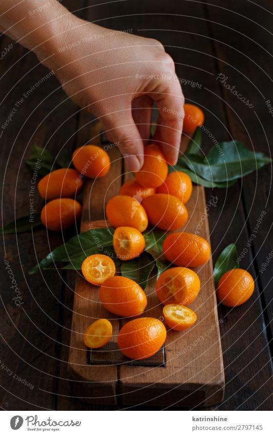 Kumquat-Früchte auf dunklem Holzgrund Frucht Dessert Ernährung Vegetarische Ernährung Diät exotisch Hand Menschengruppe Blatt dunkel frisch natürlich saftig