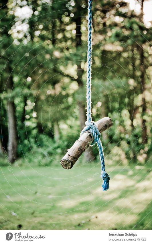 Hängestäbchen Natur blau grün Sonne Wald Umwelt Gefühle Bewegung Holz Garten braun Park Zufriedenheit Seil Schönes Wetter Idylle