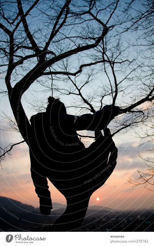 the magic tree 1 Lifestyle Stil Freude Wohlgefühl Zufriedenheit Erholung ruhig Freizeit & Hobby Ferien & Urlaub & Reisen Ausflug Freiheit Winter Mensch feminin