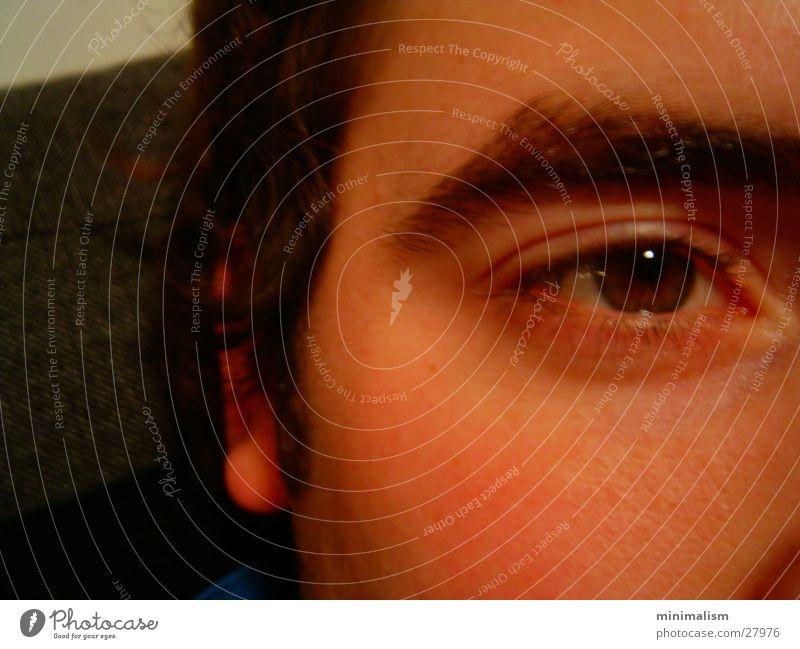bright eyes bewegungslos Mann Auge Detailaufnahme Blick Haut Momentaufnahme
