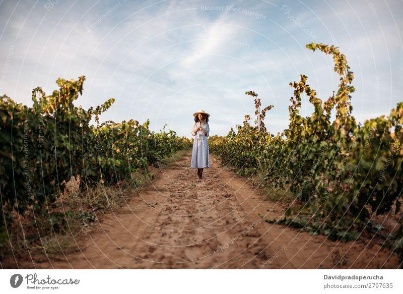 Junge Frau, die auf einem Weg inmitten eines Weinbergs geht. Weingut Weintrauben laufen organisch Ernte Wege & Pfade Glück Landwirtschaft grün Anhäufung Lächeln