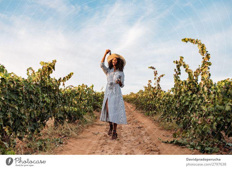 Junge Frau, die auf einem Weg inmitten eines Weinbergs geht. Weingut Weintrauben laufen Wege & Pfade organisch Ernte Glück Landwirtschaft grün Anhäufung Lächeln