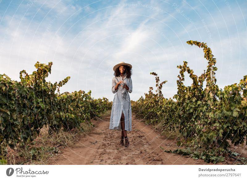 Junge Frau, die auf einem Weg inmitten eines Weinbergs geht. Weingut Weintrauben laufen organisch Wege & Pfade Ernte Glück Landwirtschaft grün Anhäufung Lächeln