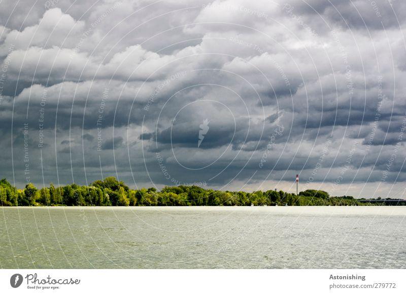 Donauinsel Umwelt Natur Landschaft Pflanze Wasser Himmel Wolken Gewitterwolken Horizont Sommer Klima Wetter schlechtes Wetter Unwetter Wärme Baum Sträucher Wald