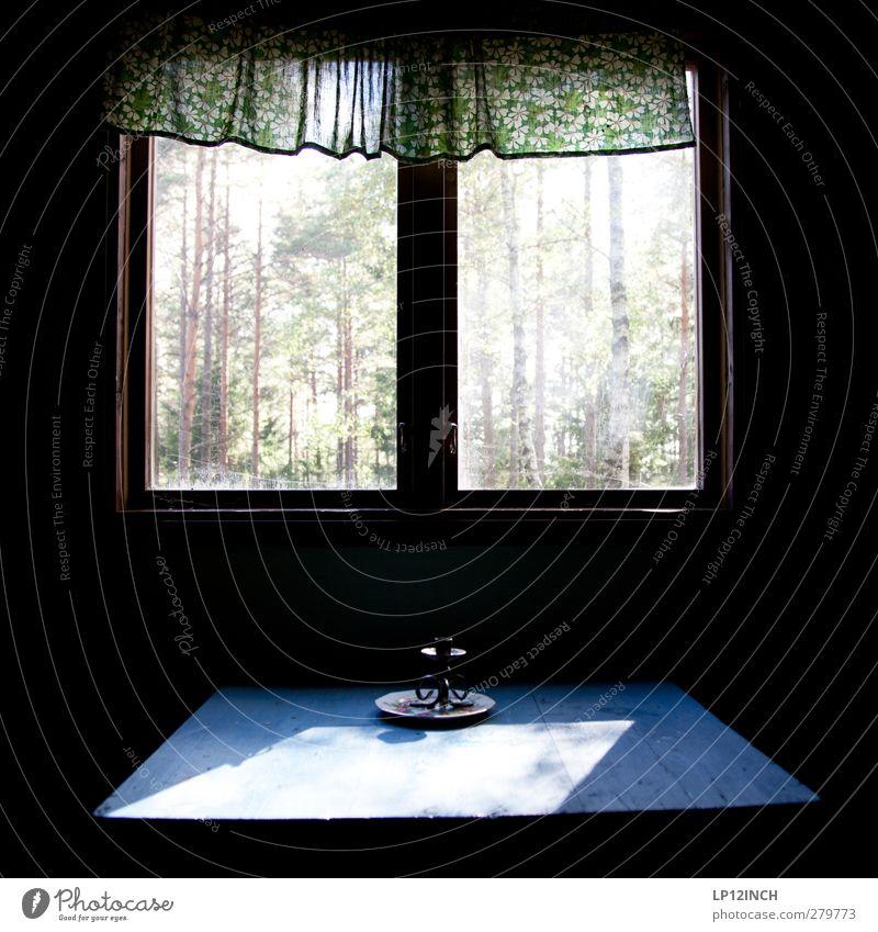 Übernachten hinter schwedischen Gardinen Ferien & Urlaub & Reisen Tourismus Ausflug Abenteuer Sommer Sommerurlaub Häusliches Leben Wohnung Haus Sonnenlicht Baum