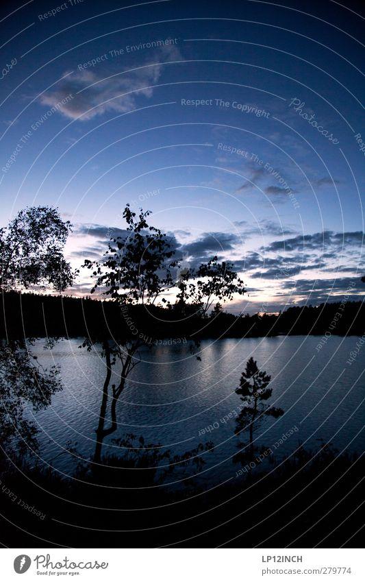 Gute Aussicht auf Schwedisch? Himmel Natur Ferien & Urlaub & Reisen blau Sommer Wasser Baum Erholung ruhig Wolken Ferne Wald Umwelt Freiheit See Tourismus