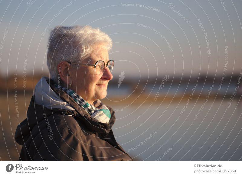 seniorin sieht in die Ferne Mensch feminin Weiblicher Senior Frau Großmutter Leben Gesicht 1 60 und älter Umwelt Natur Landschaft Frühling Schönes Wetter See