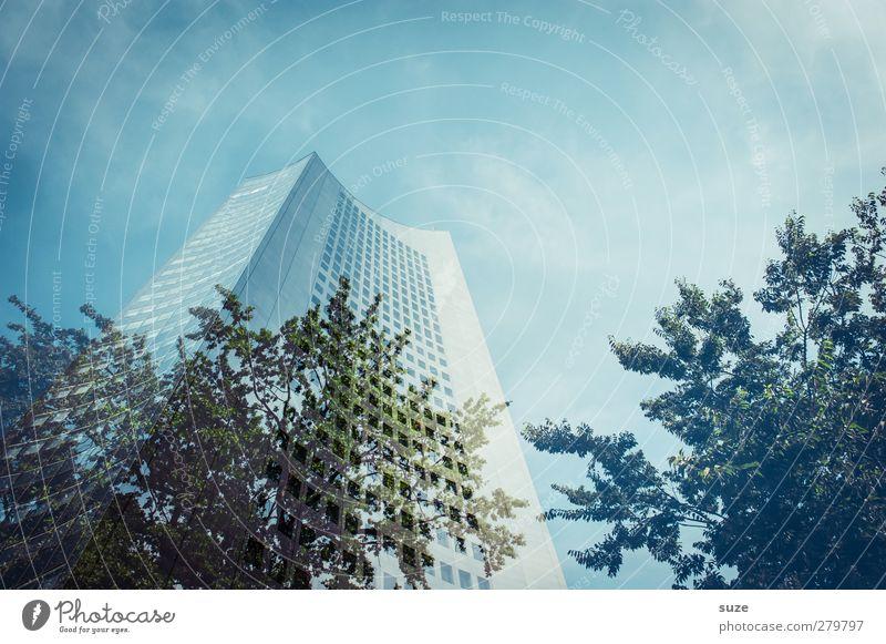 Urban Outfitters Himmel blau Baum Wolken Umwelt Fenster Architektur Gebäude Stil Business Arbeit & Erwerbstätigkeit außergewöhnlich Fassade hoch Wachstum modern