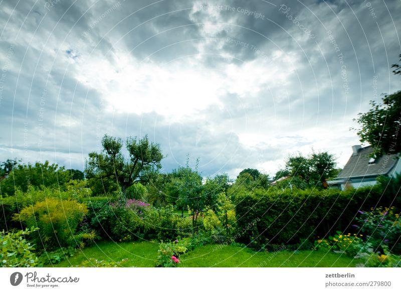 Garten Freizeit & Hobby Abenteuer Ferne Umwelt Natur Landschaft Pflanze Tier Wolken Gewitterwolken Sommer Klima Klimawandel Wetter Unwetter Blüte Park gut schön