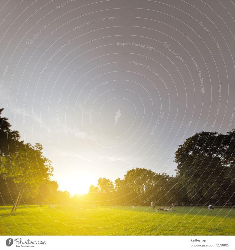 pankow - bürgerpark Lifestyle Freizeit & Hobby Sommer Sonne Mensch Menschengruppe Umwelt Natur Landschaft Horizont Klima Wetter Schönes Wetter Baum Park Wiese