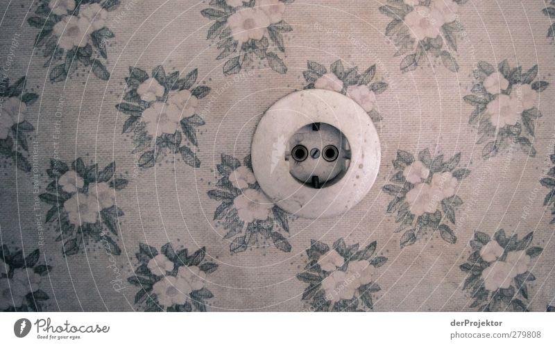 Steckdose ohne Euronorm in Blumentapete Mauer Wand authentisch außergewöhnlich schön niedlich retro rund grau Blumendeko Stromversorgung Tapetenmuster