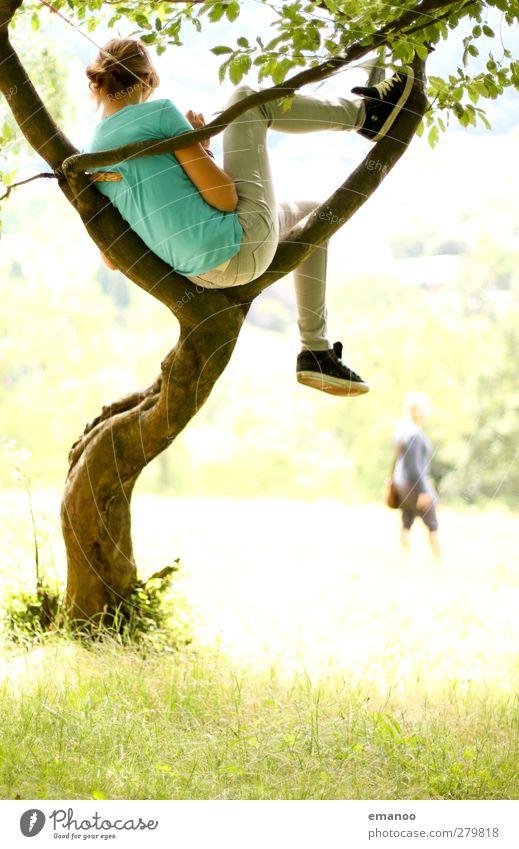 the magic tree 2 Lifestyle Freude Wohlgefühl Zufriedenheit Erholung Freizeit & Hobby Ferien & Urlaub & Reisen Ausflug Freiheit Sommer Berge u. Gebirge wandern