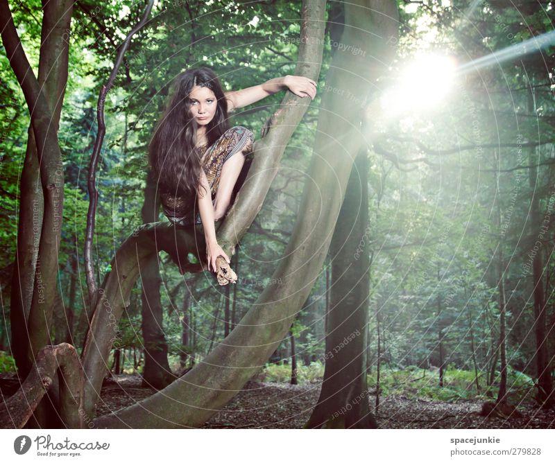 Into the light Mensch feminin Junge Frau Jugendliche 1 18-30 Jahre Erwachsene Sonne Baum Park Urwald beobachten Blick außergewöhnlich exotisch Gelassenheit